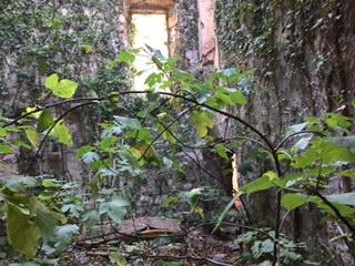 inside ruin.JPG