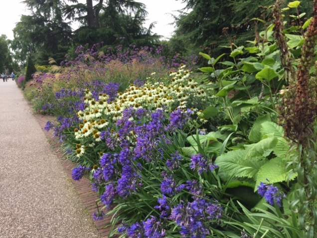 border at kew.JPG