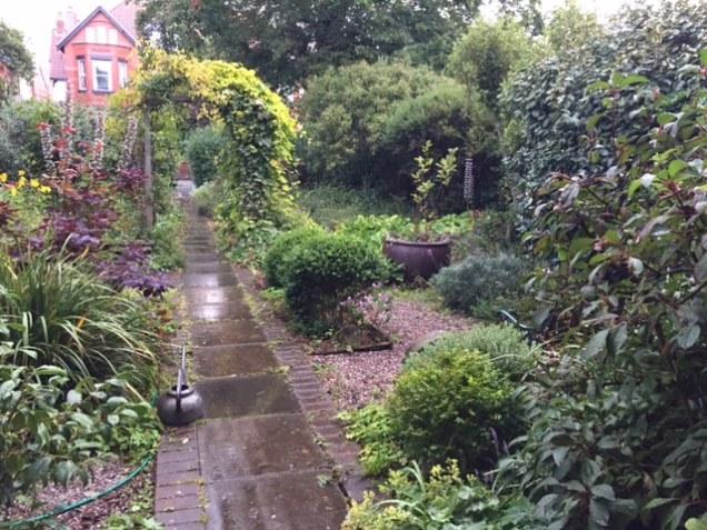 front garden in rain.JPG